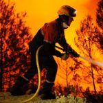 Incendios forestales y código penal